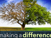 To Making A Meaningful Difference