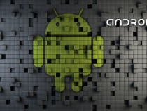 60% Online Adults Use Android Phones
