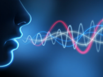Data Point: Utility Beats Intrigue For Branded Voice Tech Integration