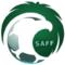 Saudi Arabian Football Federation Ups Digital Presence