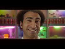 Orange Egypt Ranks 3rd In Cannes YouTube Ads Global Leaderboard