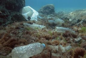 Unilever Commits To Absolute Plastics Reduction