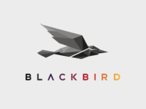 As Video Content Grows, Sky News Works With Blackbird